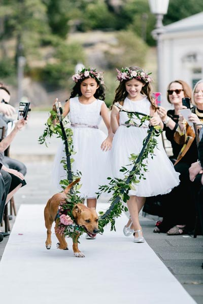 Dog Wedding Leash | Dog Wedding Ideas